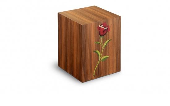 Rosa marone